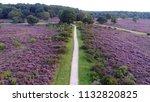 aerial photo of purple... | Shutterstock . vector #1132820825