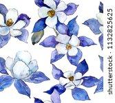 blue aquilegia flower. floral... | Shutterstock . vector #1132825625