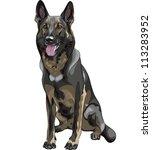 Vector Color Sketch Black Dog...