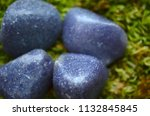 beautiful  charming purple... | Shutterstock . vector #1132845845