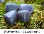 beautiful  charming purple... | Shutterstock . vector #1132845848