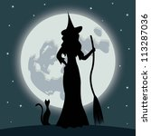 halloween witch with cat | Shutterstock . vector #113287036