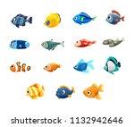 pet shop  fish  tropical fish ... | Shutterstock .eps vector #1132942646