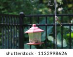 chickadee titmouse songbird... | Shutterstock . vector #1132998626