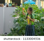 editorial use only  young girl...   Shutterstock . vector #1133004536