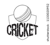 abstract cricket label   Shutterstock .eps vector #1133020952
