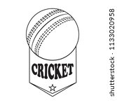abstract cricket label   Shutterstock .eps vector #1133020958