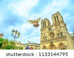 Small photo of Pigeon in flight with open wings in the foreground. In the background famous Cathedral Notre Dame, Ile de la Cite, Paris, France. The cathedral is in the French Gothic architecture style.
