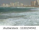 tel aviv  israel   january 19 ... | Shutterstock . vector #1133154542