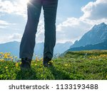 hiking in mountains | Shutterstock . vector #1133193488