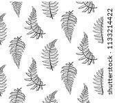 vector botanical illustration... | Shutterstock .eps vector #1133214422