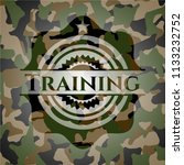 training camo emblem | Shutterstock .eps vector #1133232752