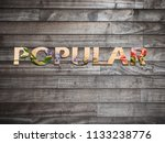 popular text over wood and...   Shutterstock . vector #1133238776