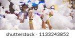 foam party entertainment ... | Shutterstock . vector #1133243852