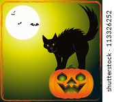 scary cat   an illustration of... | Shutterstock .eps vector #113326252
