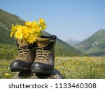 hiking boots and mountains... | Shutterstock . vector #1133460308