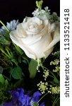 bouquet of summer flowers   rose | Shutterstock . vector #1133521418