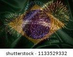 brazil flag with fireworks...   Shutterstock . vector #1133529332