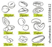 hand drawn sketch style nuts... | Shutterstock .eps vector #1133558612