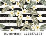 tropical plumeria flowers on... | Shutterstock .eps vector #1133571875