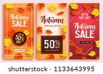 autumn sale vector poster... | Shutterstock .eps vector #1133643995