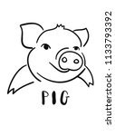 line drawing of a cute pig ... | Shutterstock .eps vector #1133793392