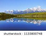 early morning view of herbert... | Shutterstock . vector #1133800748