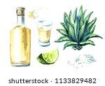alcohol drink tequila set ... | Shutterstock . vector #1133829482