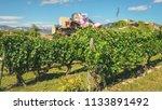 el ciego  alava  spain ... | Shutterstock . vector #1133891492