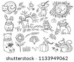 Stock vector set of doodle autumn animals isolated on white fox bear squirrel hare owl cat dog vector 1133949062