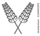 pair of wheat icon. outline... | Shutterstock .eps vector #1134042392