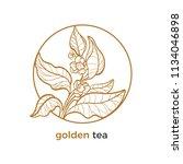 vector sticker of tea tree ... | Shutterstock .eps vector #1134046898