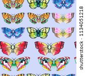 butterfly watercolor... | Shutterstock . vector #1134051218