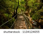 the sapadere canyon in the... | Shutterstock . vector #1134124055