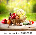 vegetables . fresh bio... | Shutterstock . vector #113430232