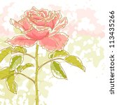 The Contour Drawing Pink Rose...