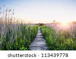 peaceful sunset with a wooden... | Shutterstock . vector #113439778