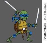 Cartoon Skull Turtle Ninja...