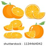 bright vector set of colorful... | Shutterstock .eps vector #1134464042