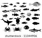 sea animals fish crab shark... | Shutterstock .eps vector #11344906