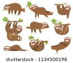 cartoon sloths family. adorable ... | Shutterstock .eps vector #1134500198