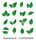 set of green leaf icons | Shutterstock .eps vector #1134533468