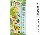 growth measure with giraffe and ... | Shutterstock .eps vector #1134588728