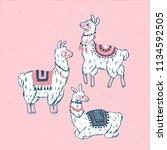 cute llamas. alpaca kid... | Shutterstock .eps vector #1134592505