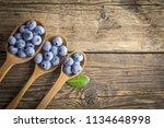 freshly picked blueberries in... | Shutterstock . vector #1134648998