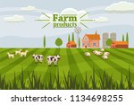 rural cute landscape with farm... | Shutterstock .eps vector #1134698255