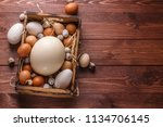 Eggs From Different Birds ...