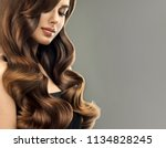 brunette  woman  with long  ... | Shutterstock . vector #1134828245