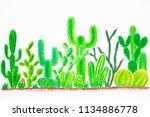 cactus plant on white...   Shutterstock . vector #1134886778