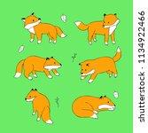 cartoon cute actions red fox...   Shutterstock .eps vector #1134922466